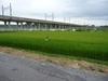 2008_08100001