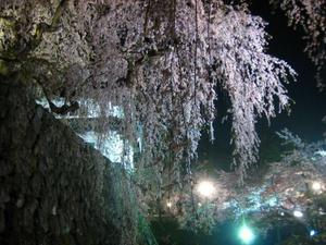 2010_05_05_3