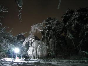 2011_01_01_2